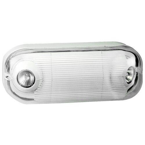 Outdoor Wet Location Emergency Light