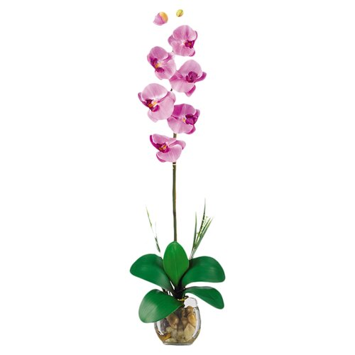 Liquid Illusion Single Phalaenopsis Silk Orchid Arrangement in Mauve