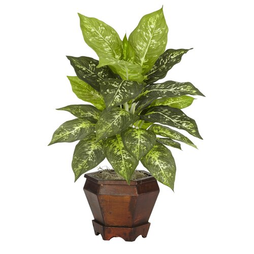 Nearly Natural Dieffenbachia Assorted Silk Desk Top Plant in Pot