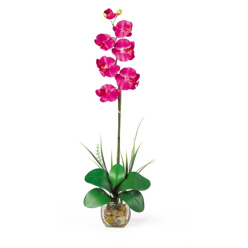Liquid Illusion Single Phalaenopsis Silk Orchid Arrangement in Beauty Pink