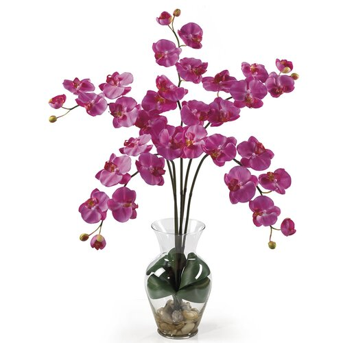 Nearly Natural Liquid Illusion Phalaenopsis Silk Orchid Arrangement in Dark Pink