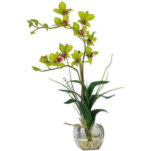 Nearly Natural Silk Dendobrium Arrangement with Glass Vase in Green