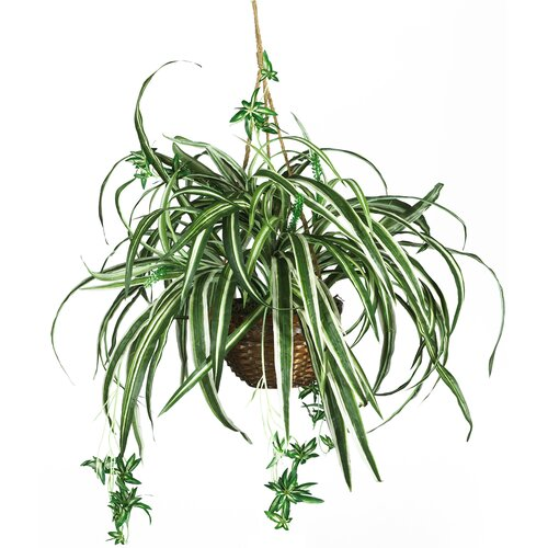Nearly Natural Silk Spider Hanging Plant in Basket