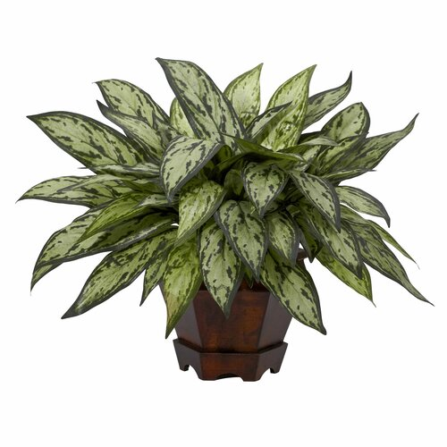 Nearly Natural Triple Silver Queen Desk Top Plant in Decorative Vase