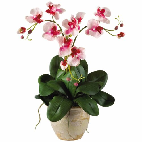 Nearly Natural Triple Mini Phalaenopsis Orchid Arrangement in Pink