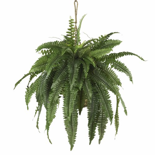 Nearly Natural Nearly Natural Boston Fern Hanging Plant in Basket
