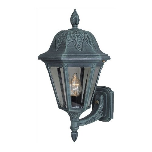 Special Lite Products Floral Outdoor Wall Lantern