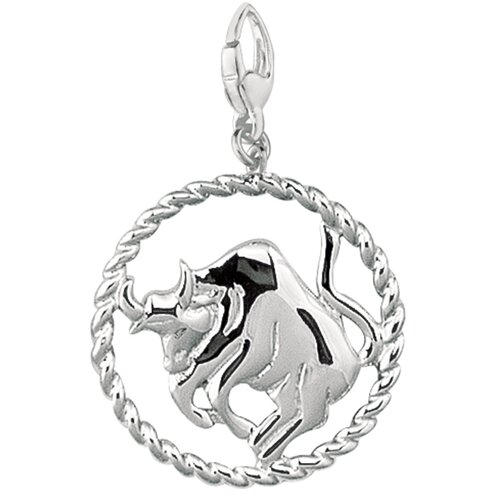 EZ Charms Sterling Silver Rope Border Open Circle Zodiac Taurus Symbol Charm