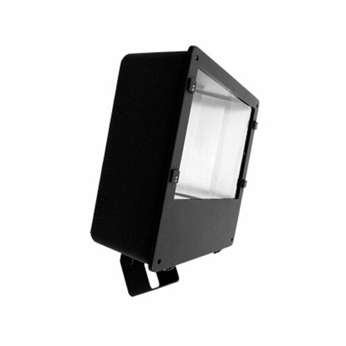 Barron Lighting One Light 250 Watts Flood Light in Architectural Bronze
