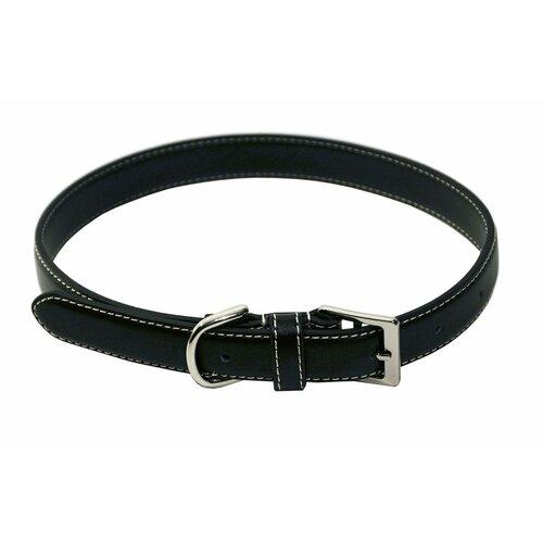 Perry Street Dog Collar