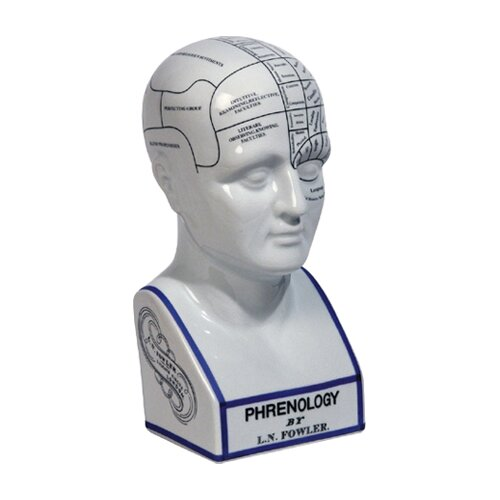 Authentic Models Phrenology Head Bust