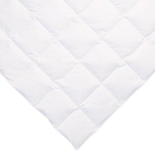 Ogallala Comfort Company Sweetheart 700 Hypo-Blend Southernlite Crib Comforter