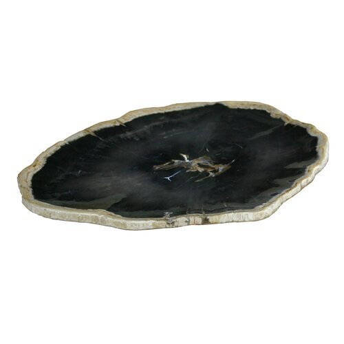 Petrified Wood Plate