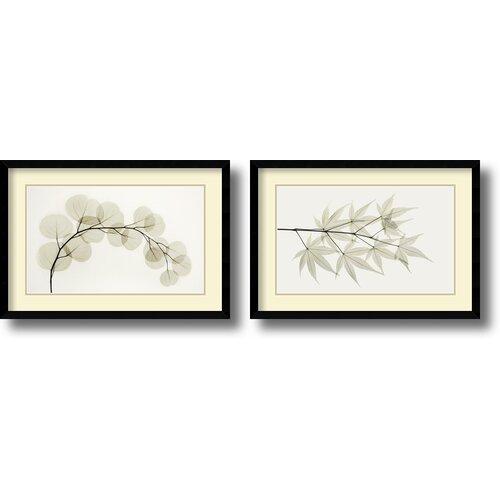 'Eucalyptus and Japanese Maple' by Albert Koetsier 2 Piece Framed Photographic Print Set