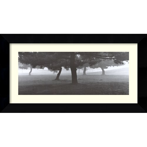 Amanti Art 'Trees in the Fog' by Richard Calvo Framed Photographic Print