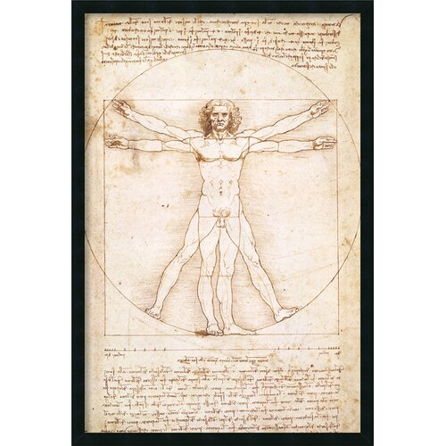 'Proportions of the Human Figure (Vitruvian)' by Leonardo da Vinci Framed Painting Print