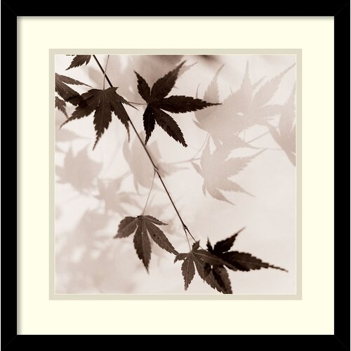 'Japanese Maple Leaves No. 1' by Alan Blaustein Framed Graphic Art