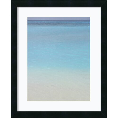 Amanti Art 'Blue 2' by Brian Leighton Framed Photographic Print