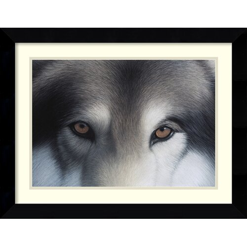 Amanti Art 'Eyes of the Hunter: Gray Wolf' by Charles Alexander Framed Painting Print