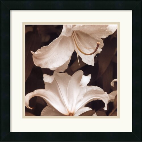 'White Lilies' by Rebecca Swanson Framed Photographic Print