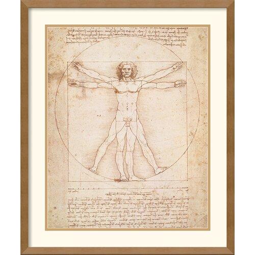Amanti Art 'Proportions of the Human Figure (Vitruvian Man)' by Leonardo da Vinci Framed Graphic Art