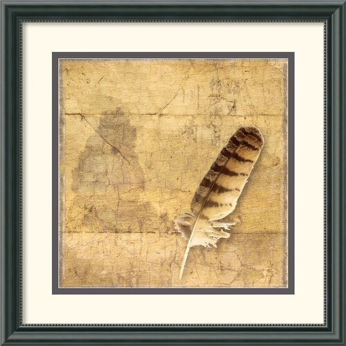 Amanti Art 'Owl Feather' by Susan Friedman Vintage Framed Photographic Print
