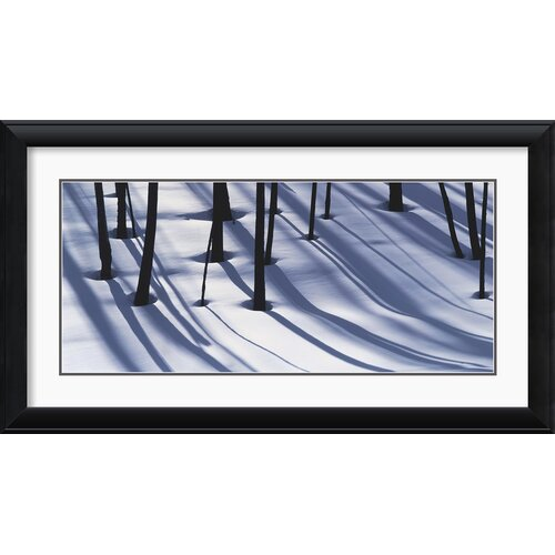 'Pine Trees and Morning Shadows' by William Neill Framed Photographic Print
