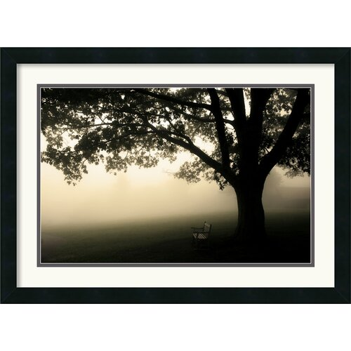 Amanti Art 'Shenandoah' by Andy Magee Framed Photographic Print
