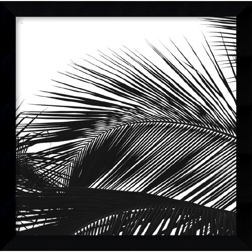 'Palms 13 (Detail)' by Jamie Kingham Framed Photographic Print