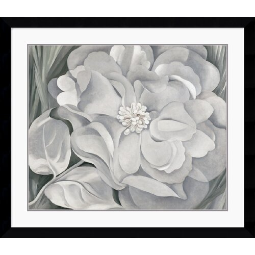 'The White Calico Flower, 1931' by Georgia O'Keeffe Framed Painting Print