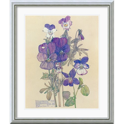 Amanti Art 'Wild Pansy' by Charles Rennie Mackintosh Framed Painting Print
