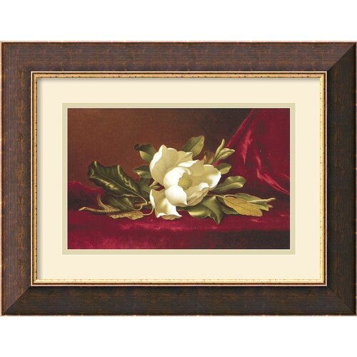 'The Magnolia Flower' by Min Johnson Heade Framed Painting Print