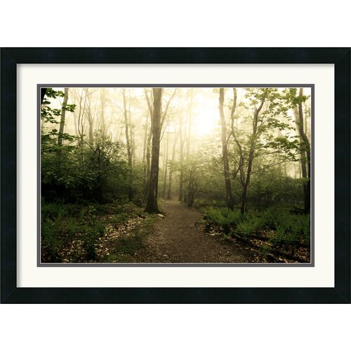 Amanti Art 'Appalachian Trail' by Andy Magee Framed Photographic Print