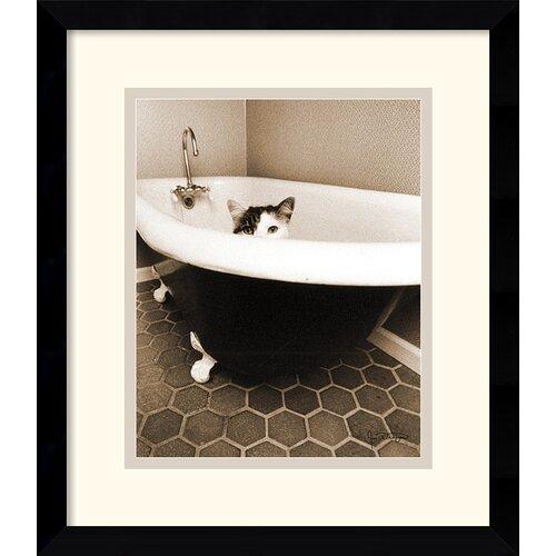 Amanti Art 'Kitty III' by Jim Dratfield Framed Photographic Print