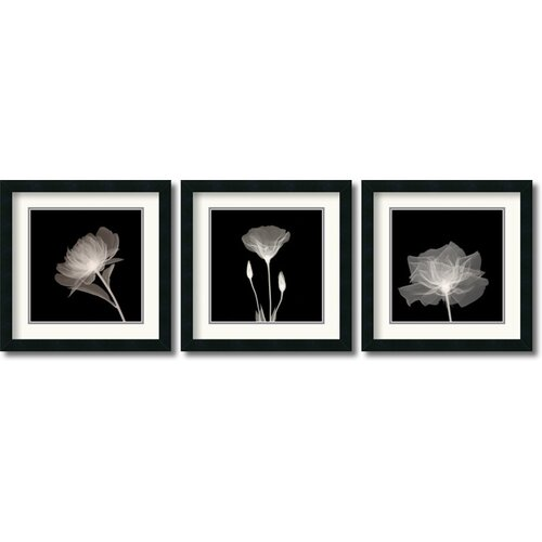Translucent Floral 3 Piece Framed Photographic Print Set (Set of 2)