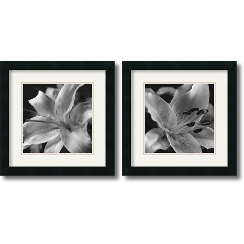 Amanti Art 'Lily' by Gaetano Art Group Framed Photographic Print