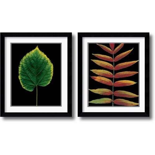 Amanti Art 'European Linden and Staghorn Sumac' by Christopher Griffith 2 Piece Framed Photographic Print Set