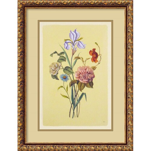 Amanti Art Botanical Bouquet V Italian Engraving Framed Painting Print