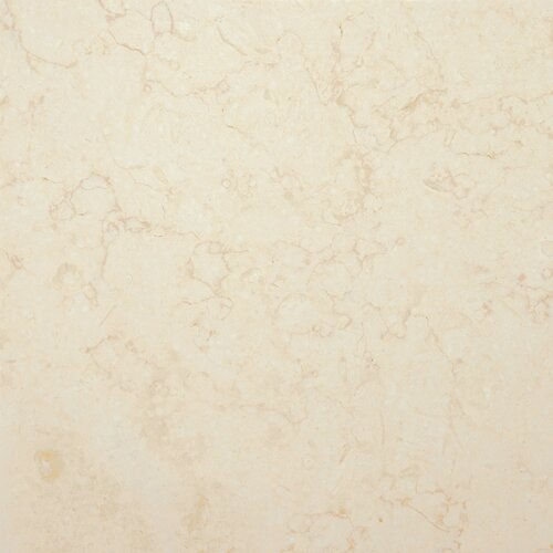"""Emser Tile Isis Gold 12"""" x 12"""" Honed Limestone Tile in Isis Gold"""