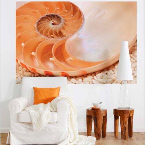 Brewster Home Fashions Komar Nautilus 1-Panel Wall Mural