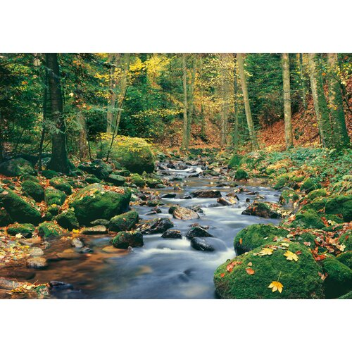Brewster Home Fashions Ideal Decor Forest Stream Wall Mural