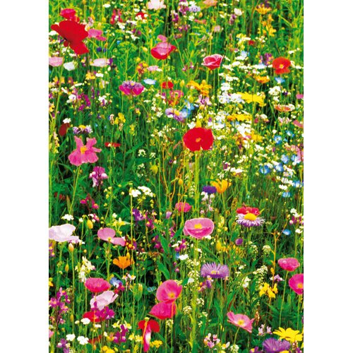 Brewster Home Fashions Ideal Decor Flower Field Wall Mural