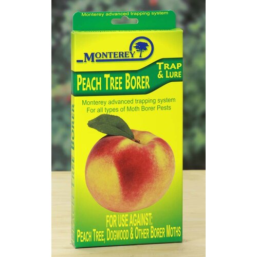 Monterey Peach Tree Borer Trap and Lure