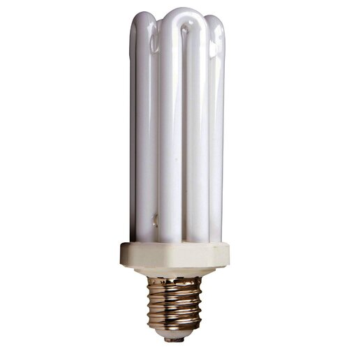65W Compact Fluorescent Light Bulb