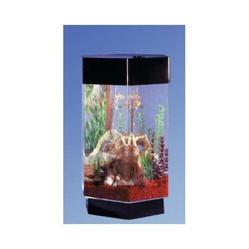 Aqua 8 gallon scape hexagon aquarium kit wayfair for 30 gallon hexagon fish tank
