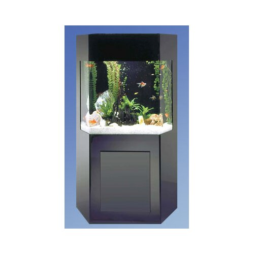 Midwest Tropical Fountain Aqua 50 Gallon Custom Shadow Box Aquarium Kit