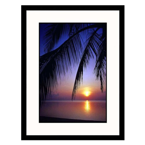 Seascapes Palm Leaves and Ocean Framed Photographic Print