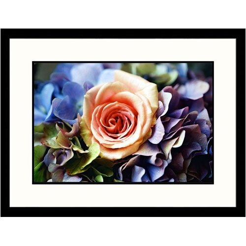 Florals Pink Rose with Hydramgea Framed Photographic Print