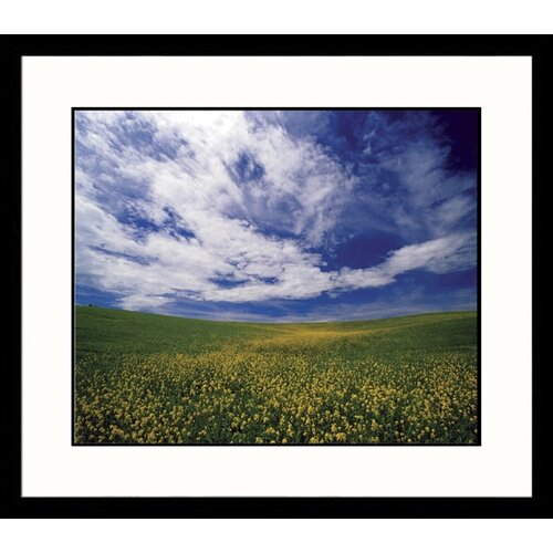 Great American Picture Landscapes 'Field of Flowers' by Adam Jones Framed Photographic Print