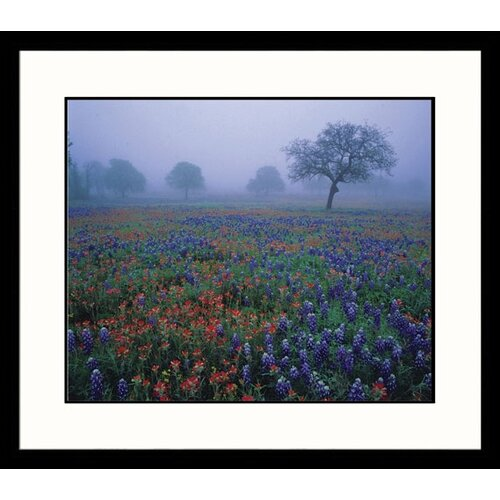 Great American Picture Landscapes 'Texas Fog and Flowers' by Adam Jones Framed Photographic Print